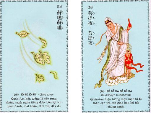 chu-dai-bi-23-511x383