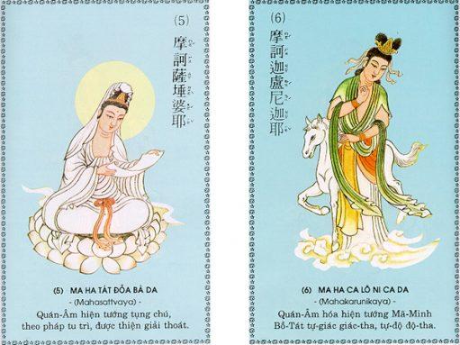 chu-dai-bi-3-511x383